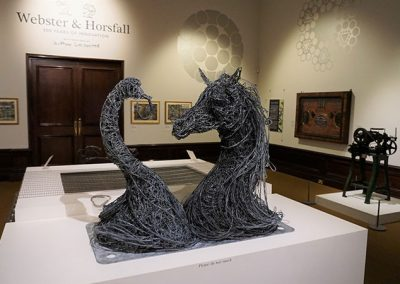 Webster-&-Horsfall-exhibition-at-BMAG-(1)