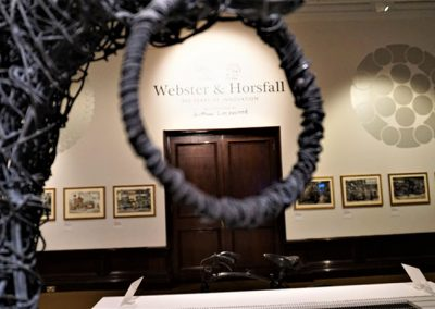 Webster-&-Horsfall-exhibition-at-BMAG-(11)